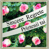sincere regrete